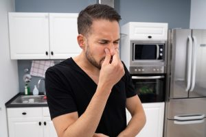 Bad Smell Or Odor In House